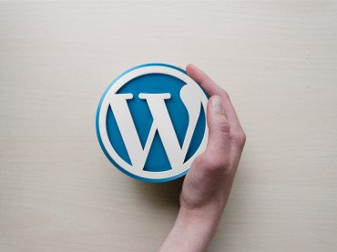 11 Great Ways You Can Use WordPress