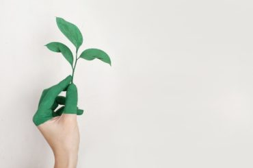 10 Green Business Ideas For Entrepreneurs