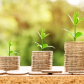 How Do Cannabis Companies Deal With Low Profitability?