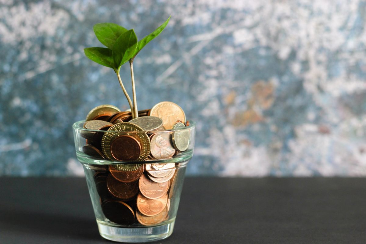 Brilliant Ways to Save Money While Living Independently